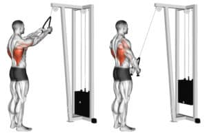 Benefits of Straight Arm Lat Pull down