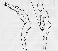 Standing lat pull down macchine