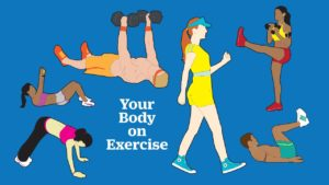 Why Is Exercise Necessary For Our Body?