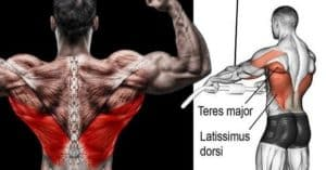 Targeting Your Lats