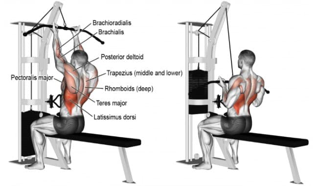 Benefits of Lat PullDown
